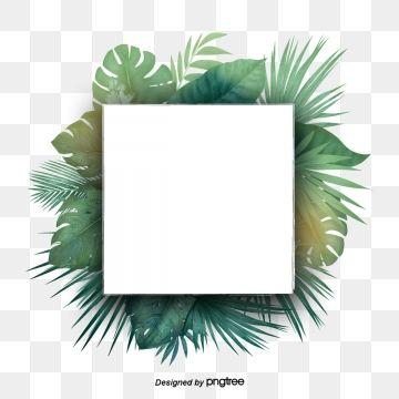 Green Tropical Plant Palm Leaf Border Border Clipart Palm Leaf Botany Png Transparent Clipart Image And Psd File For Free Download Flower Clipart Leaf Clipart Cartoon Leaf