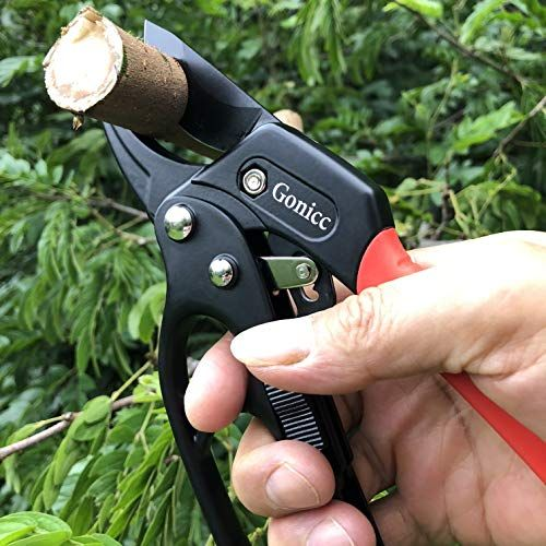 Gonicc 8 Professional Ratchet Anvil Pruning Shears Best Offer Backyardequip Com In 2020 Pruning Shears Garden Shears Pruners