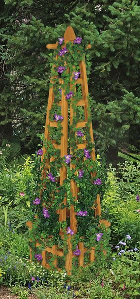 Obelisks Garden Trellis And Trellis On Pinterest