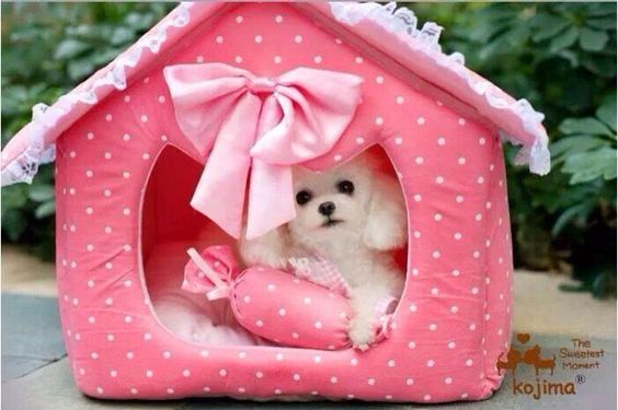 Love this doggie bed