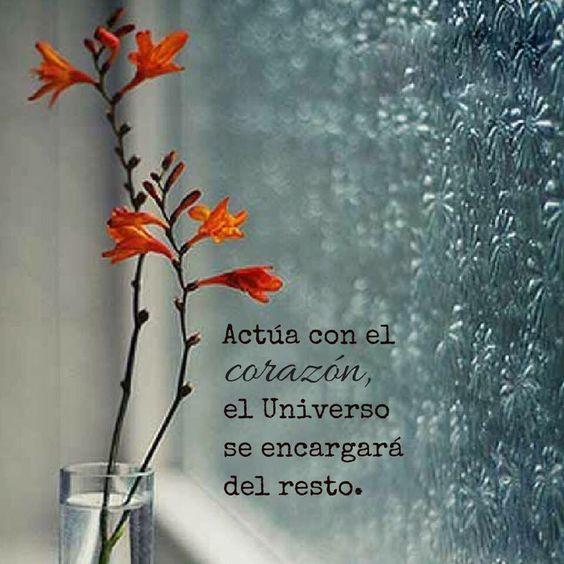 RAFA ORTIZ (@STEFANSVEN1313) | Twitter