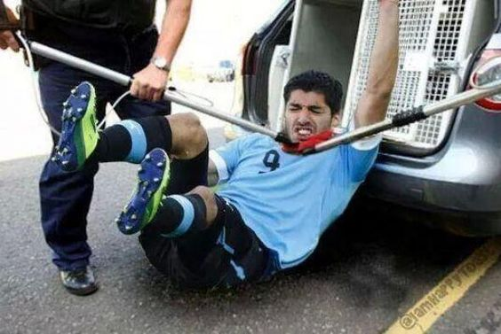 Memes de la mordida de Luis Suárez - Univision