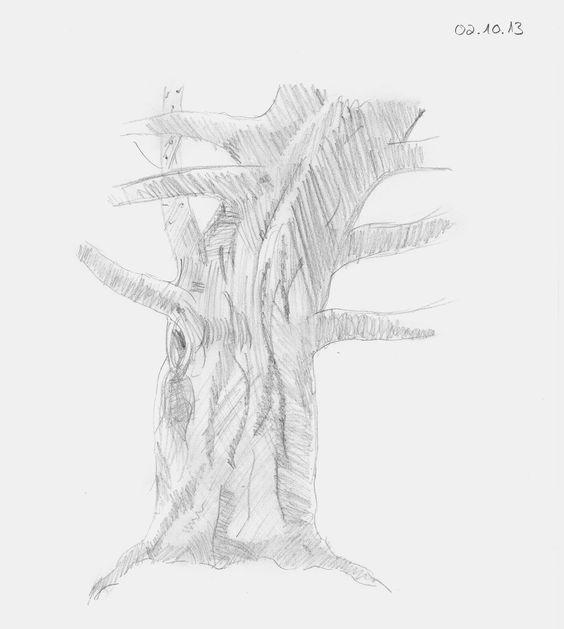 bleistiftzeichnung bleistiftskizze anf nger baum zeichnen lernen http. Black Bedroom Furniture Sets. Home Design Ideas