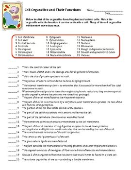 Printables Cell Organelles Worksheet Answers student the words and on pinterest cell organelles structure function matching worksheet cells this is a worksheet