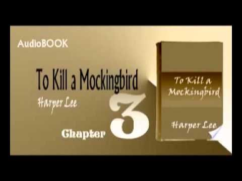 to kill a mockingbird chapter 9 Free summary and analysis of chapter 9 in harper lee's to kill a mockingbird  that won't make you snore we promise.