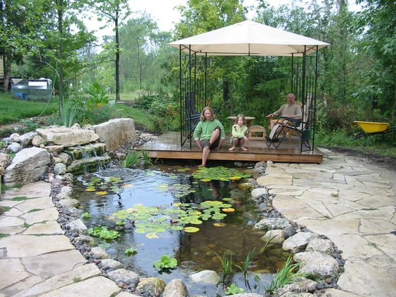 Natural landscaping ponds and waterfalls on pinterest for Natural koi pond