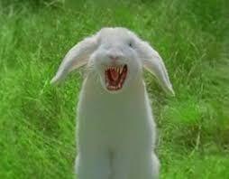 「Bunny」の画像検索結果