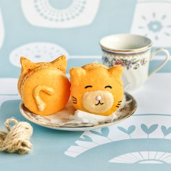 Super cute Kitty Cat Macarons with Carrot Cake Flavoured Icing