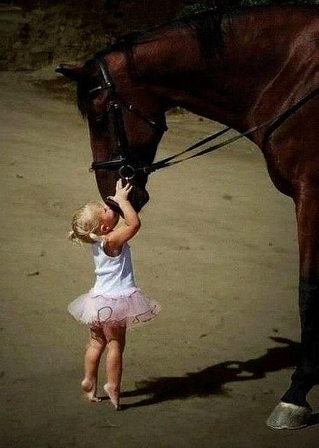 little girl kissing horse | Great affection, little girl kissing horse | Flickr - Photo Sharing!