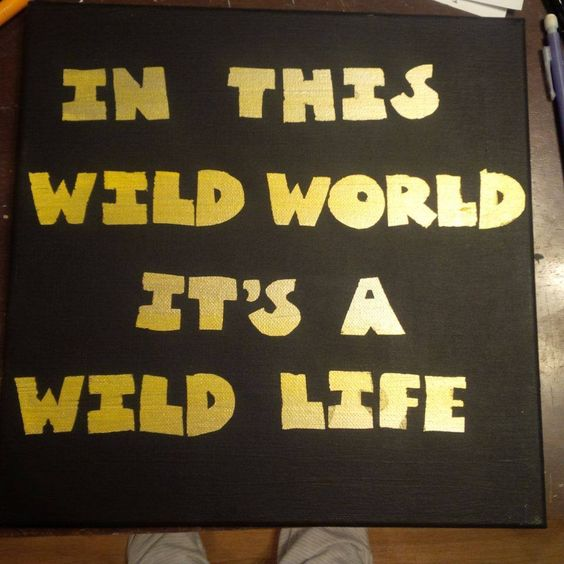 """DIY canvas wall art song quote: """"Wild Life""""-Hedley"""