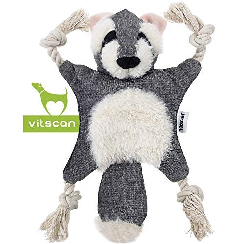 Dog Squeaky Toys Raccoon Dog Toy No Stuffing Popular Crinkle Dog
