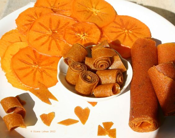 Persimmon fruit rollups and persimmon chips. See my blog and DIY video ...