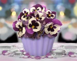 Pretty Pansies cupcakes: