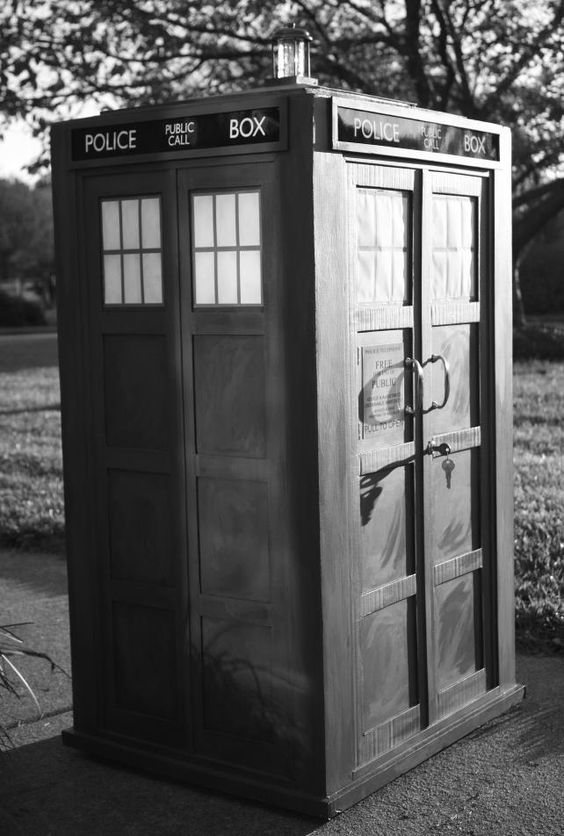 The 10th Doctor's TARDIS as a costume.