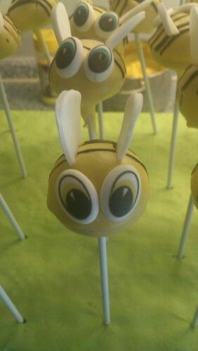 Bienen cake pops