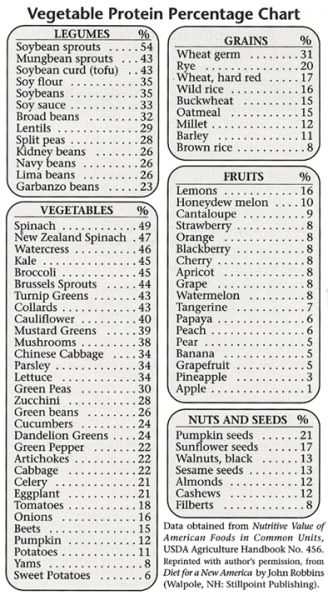 vegetable protein chart
