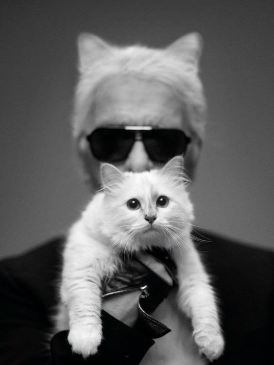 Karl Lagerfeld and Le Chat Chopoutte