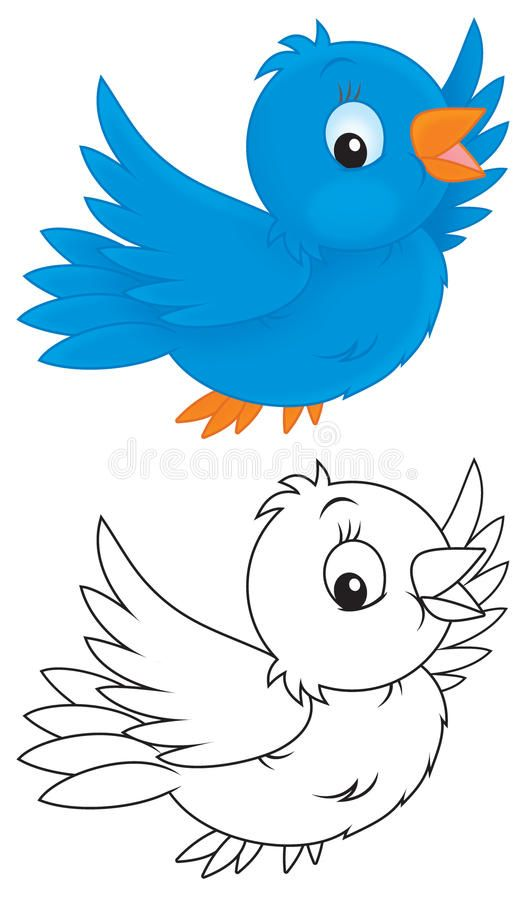 Blue Bird Little Blue Bird Flying Color And Black And White Outline Illustrati Sponsored Paid Sponsored Cartoon Birds Bird Outline Bird Coloring Pages