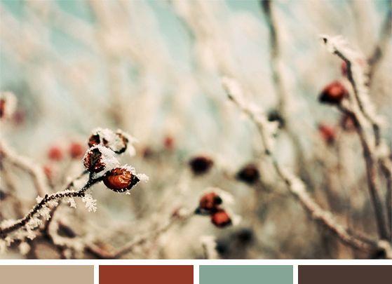 Color Inspiration: December