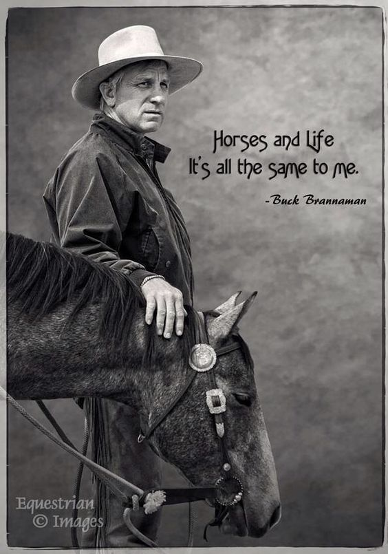 """,,Horse and life. It's all the same to me."""""""