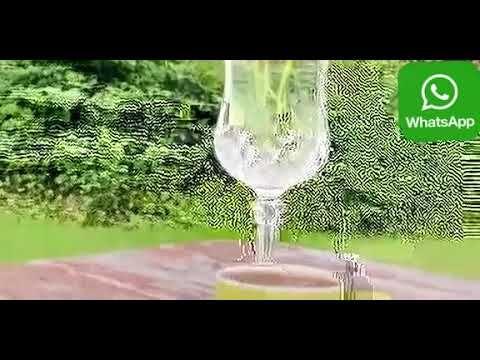 اللهم فاطر السماوات والارض عالم الغيب والشهادة لا اله الا انت حالات واتساب Youtube Champagne Flute Glassware Enjoyment