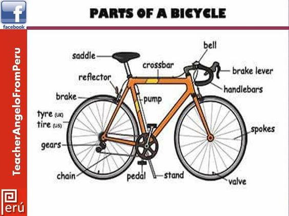 cycling as a means of transport Why is cycling the most efficient mode of transport 20 july 2017 – community if you want to travel quicker, diminish those parking worries, save money and the environment then hop on your bike and let the efficiency commence.