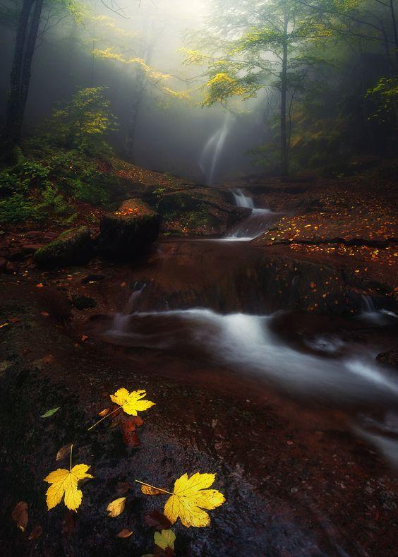 misty river | Krasi St Matarov colour my world
