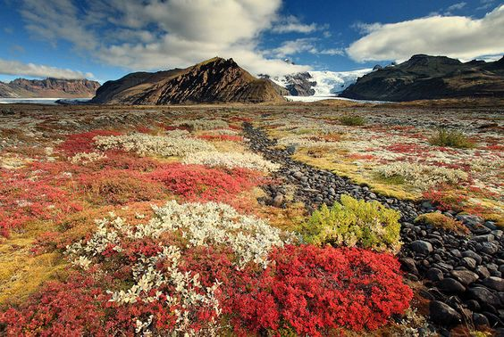 Colorful autumn in Iceland. This is my beautiful country. If you ever want to see amazing nature then visit Iceland. -saedis Photo by Alexandre Deschaumes:
