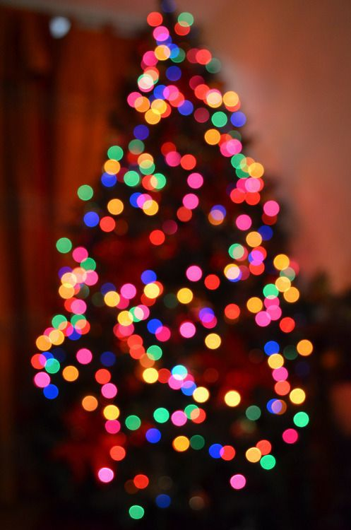 tumblr christmas pictures - Google Search Pinned by ZenSocialKarma ...