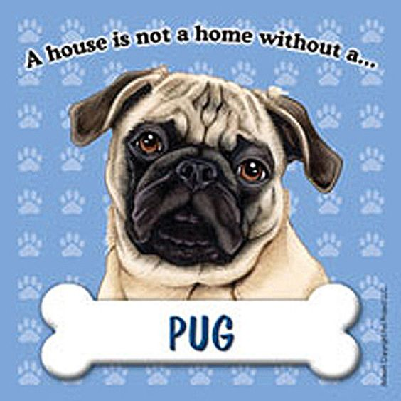 Details About Pug Magnet House Is Not A Home Tan Pug Dog Pugs Dog Magnets