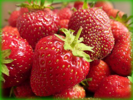 fresas de Cuena