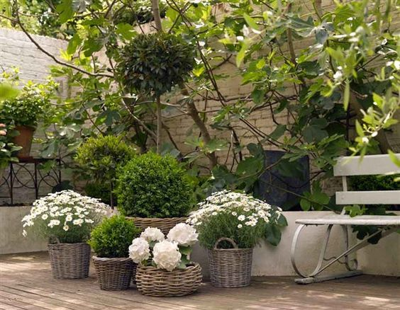 white flowers in baskets: