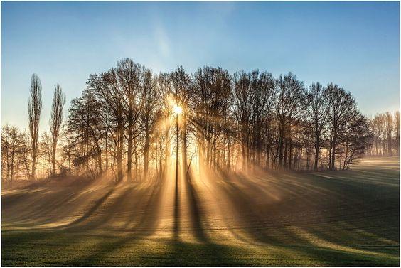 Sonne im Dezember von Michael Drak