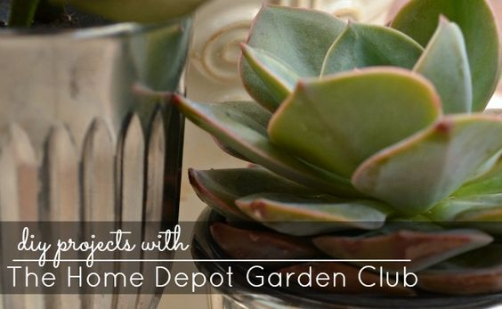 Spring DIY Projects with The Home Depot Garden Club