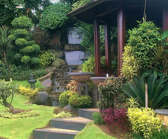 Small tropical gardens tropical gardens and tropical on for Plants for landscaping around house