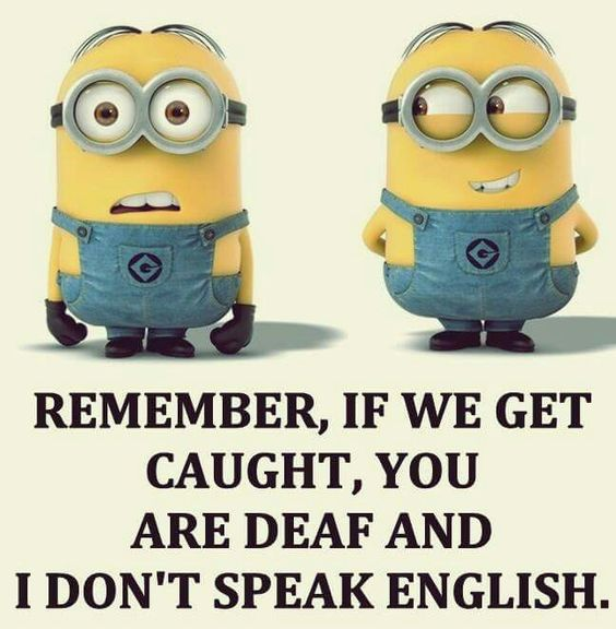 Remember, If we get Caught, You are Deaf and I don't Speak English. HeHeHe...: