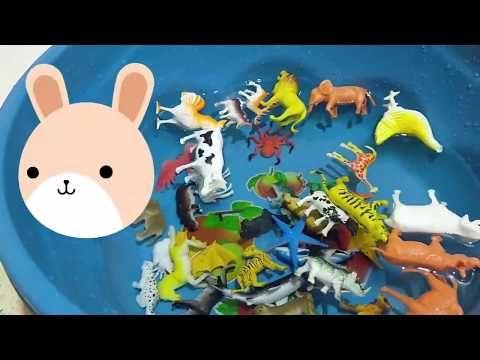 العاب اطفال Dinosaur Colors ديناصور لعبة الديناصور العاب الديناصورات Animals كرتون اسماء الحيوانات Character Tweety Fictional Characters