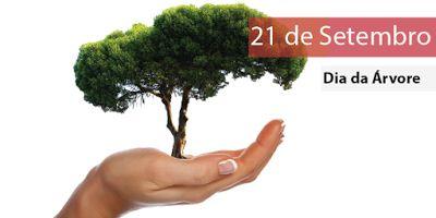 FALANDO DE VIDA!!: Dia da Árvore