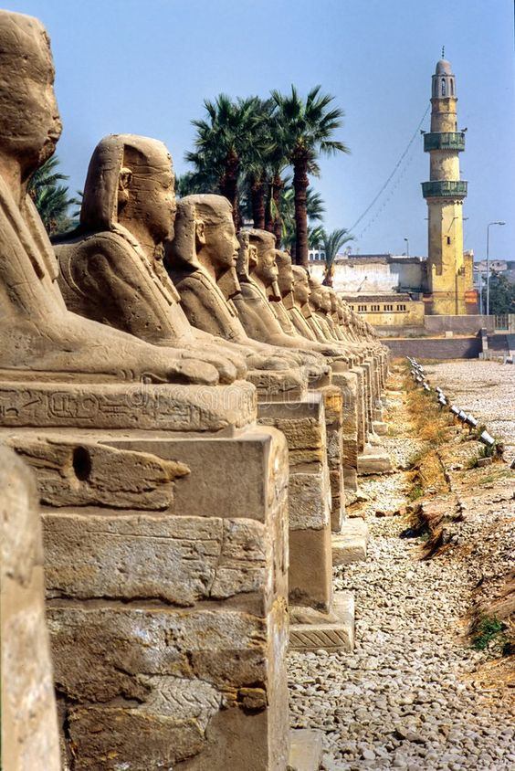 Luxor, Egypt. Sphinxs outside the Temple of Luxor, Egypt , #Sponsored, #Egypt, #Luxor, #Temple, #Sphinxs #ad