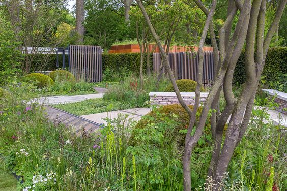 the royal bank of canada garden at the chelsea flower show rhs gardening chelsea flower show pinterest gardens canada and toms
