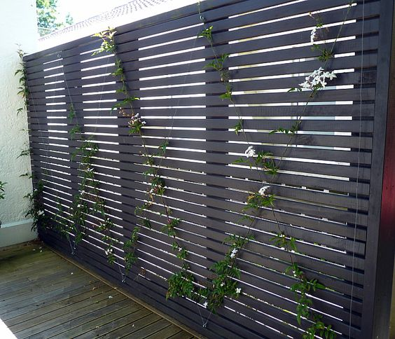 Patio wood screen horizontal slat with wire espalier vine
