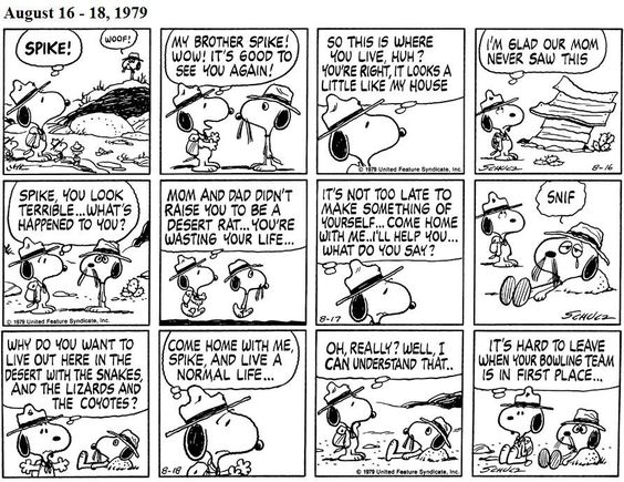 During their visit, Snoopy tries to persuade Spike to come home with him. Spike decides not to leave because his bowling team is in first place.