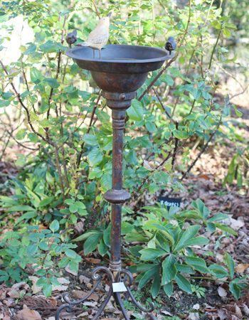 Gardening magazine BISES No.94 バードバス。お庭に小鳥たちのための憩いの場所を作りませんか?