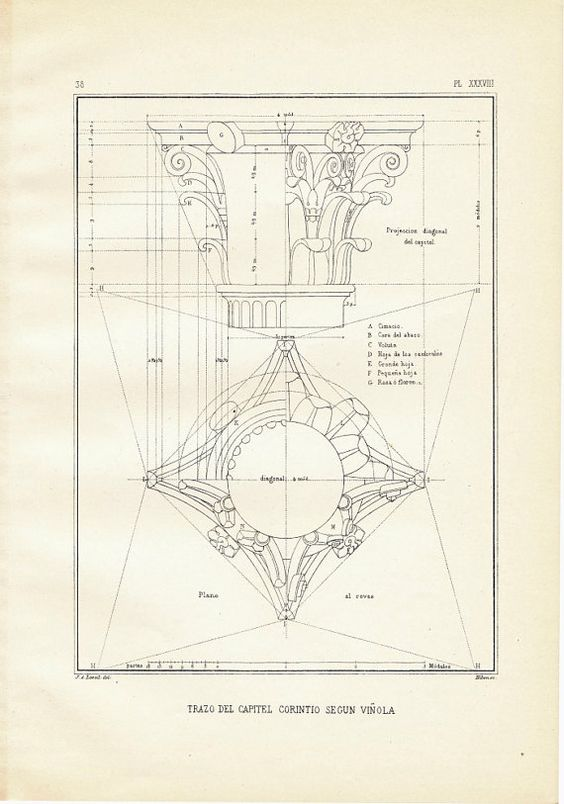 A vintage print of drawing of a Corinthian capital by Vignola. This architectural print is a steel engraving.