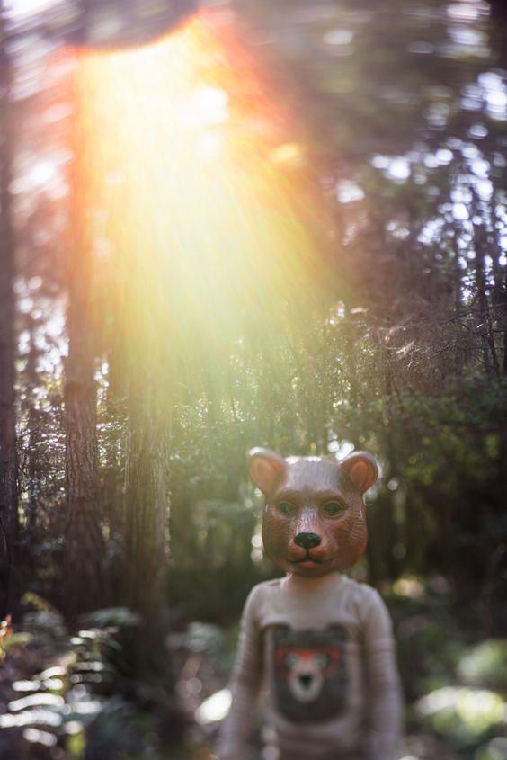 bear by Monika Colichio