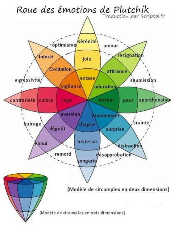roue des émotions et ce qui en découle...: