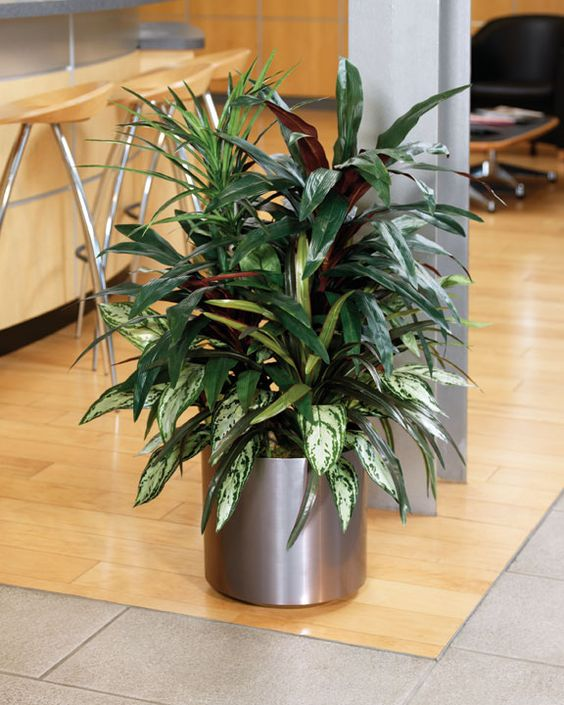 Plants plants indoor and fake plants on pinterest for Indoor flower design