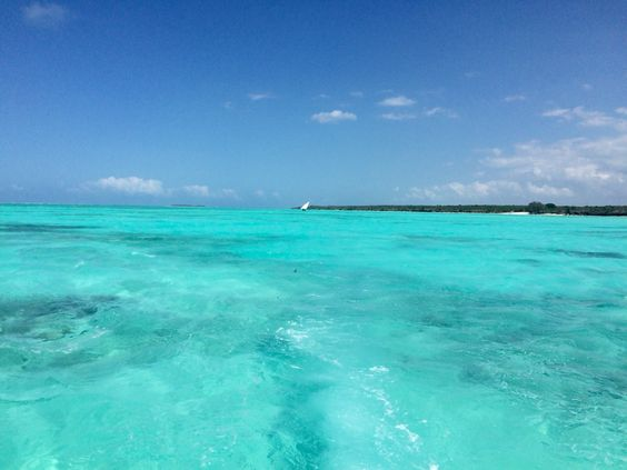 Beautiful! Mwembe, Zanzibar