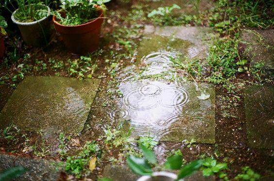 Odeur des entrailles de la terre , clapotis prudent de la pluie, goutte qui coule sur l arête du nez ,