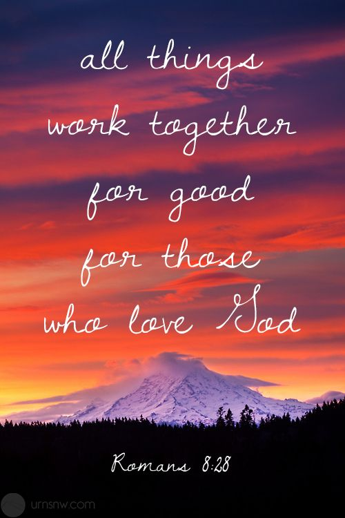 Romans 8:28 All things work together for good for those who love #God . #bible #verse #scripture
